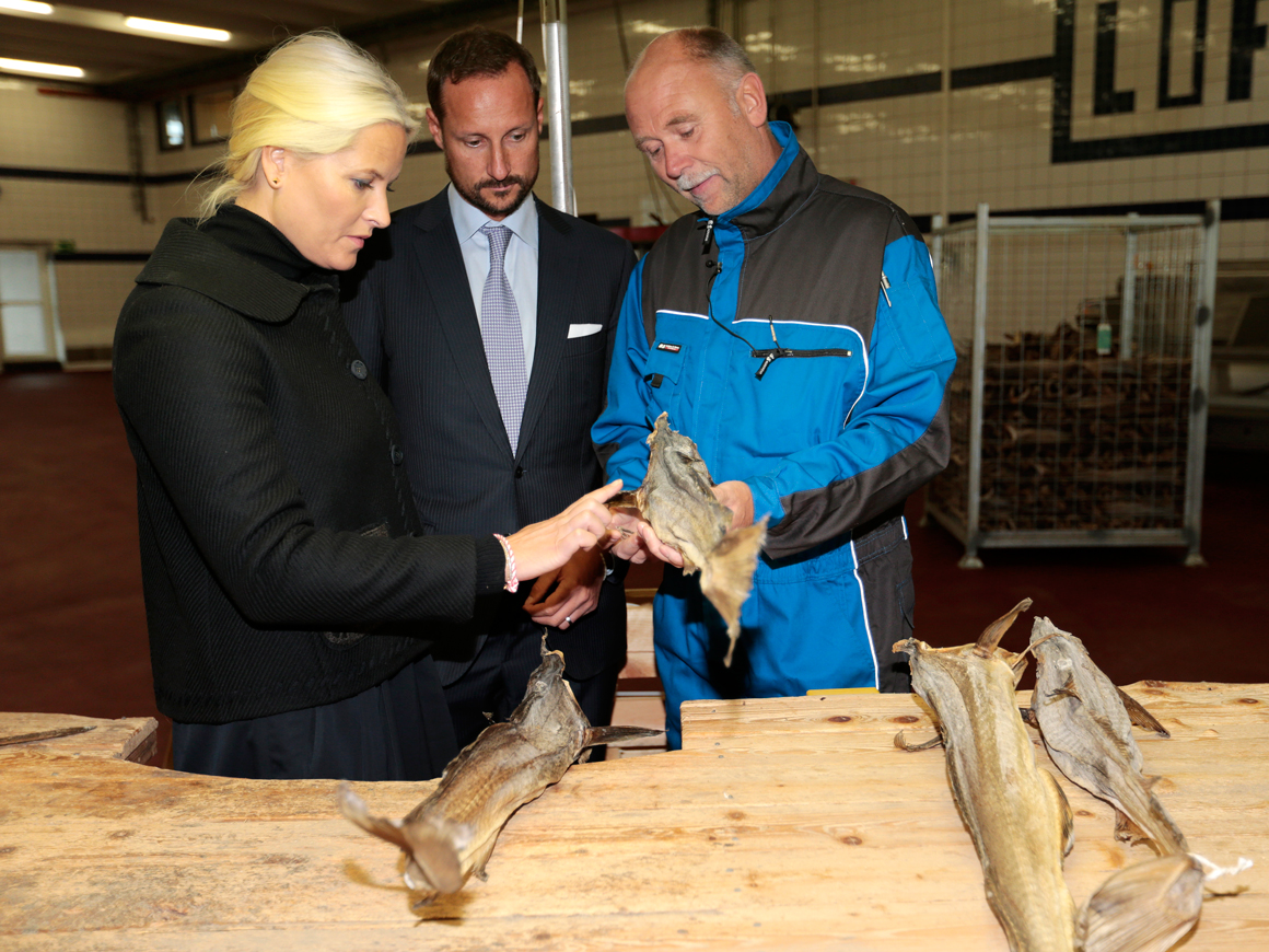 viking fisk lofoten